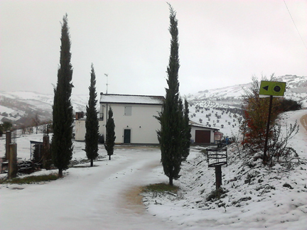 cirelli wine abruzzo italy