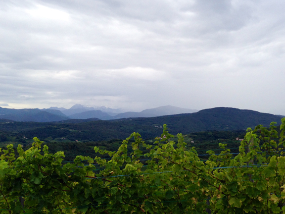 friuli harvest rain 2014