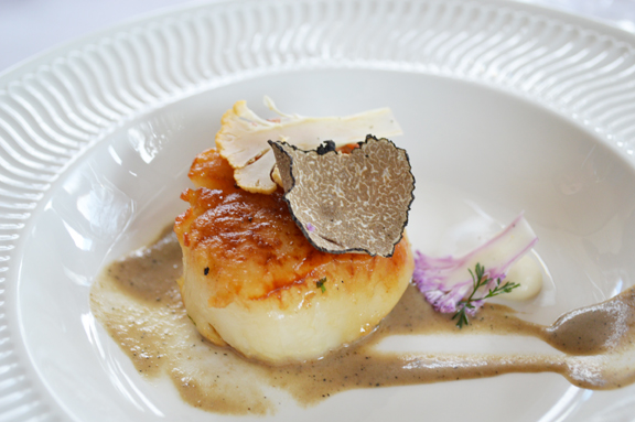 better scallop