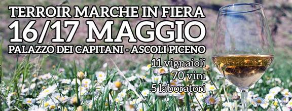 verdicchio festival marche may 2015