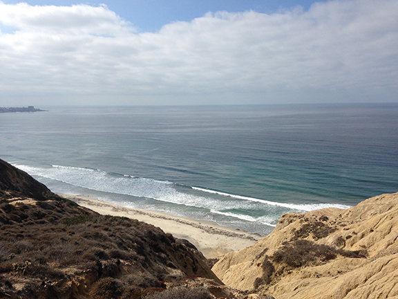 la jolla california blacks beach
