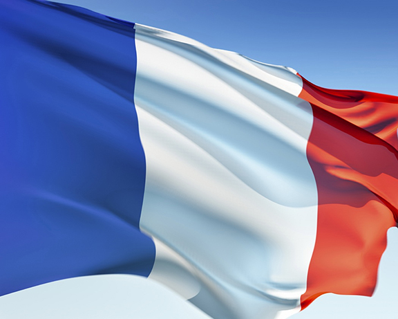 french flag vive la france